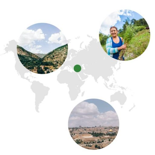 Ursprungsgebiet von Koriander auf der Weltkarte: östlicher Mittelmeerraum